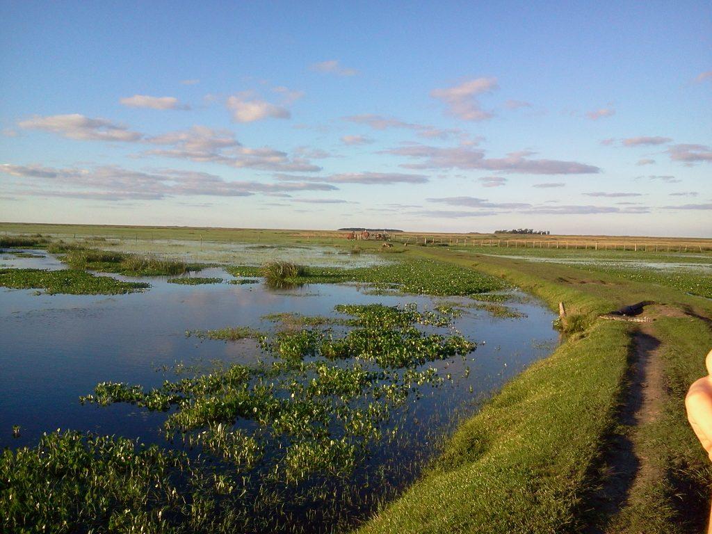 ARGENTINA: Tur Eco- Natura Salbatica