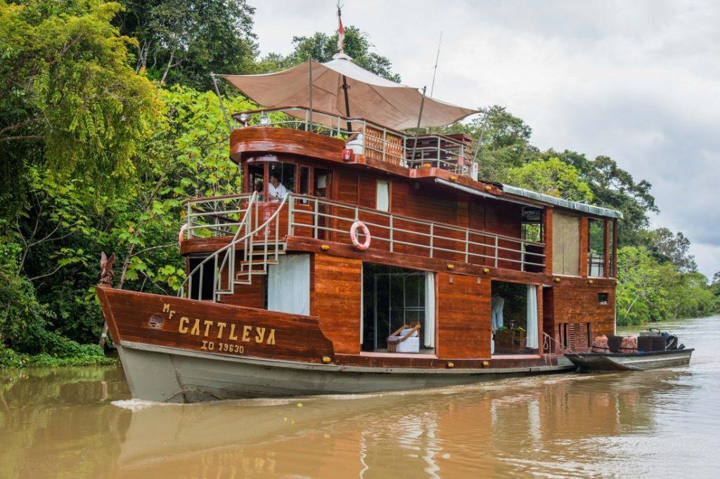 Cattleya Journey: Croaziera pe Amazon