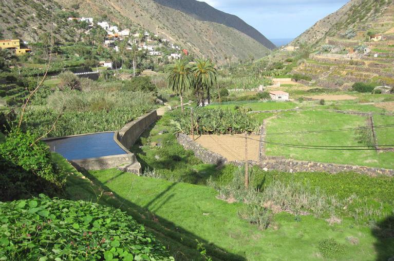 Program de drumetii in La Gomera – Gradina botanica a Insulelor Canare