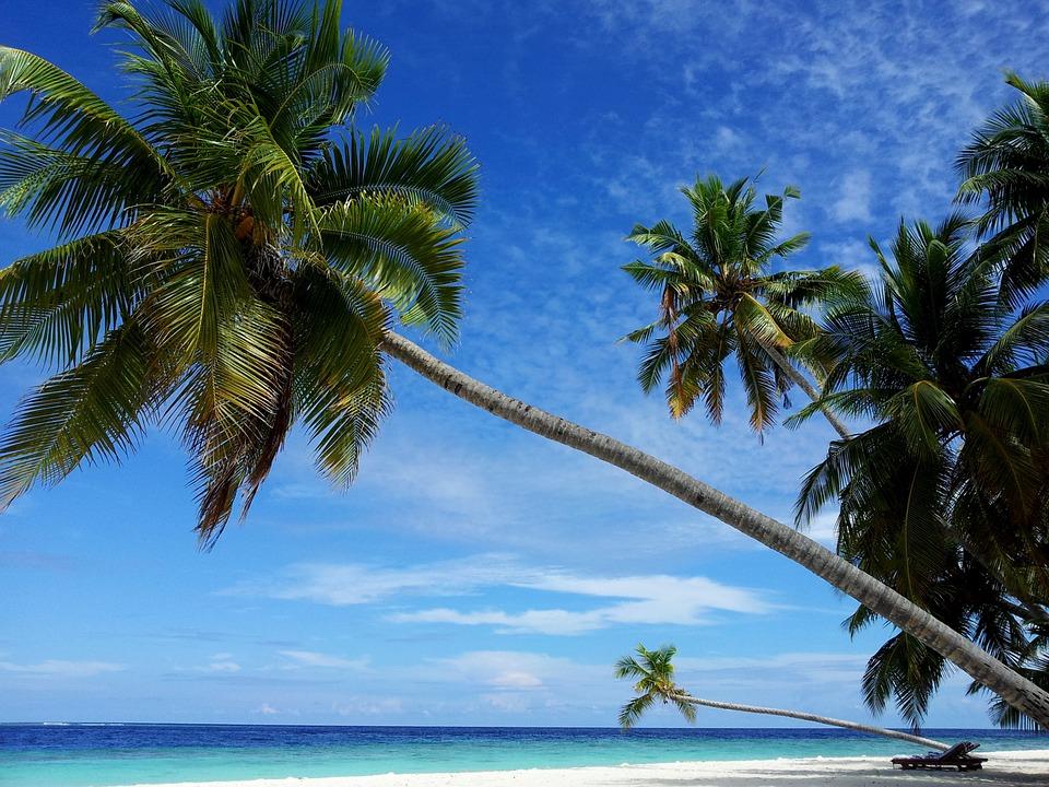 Tabere de surf in Maldive
