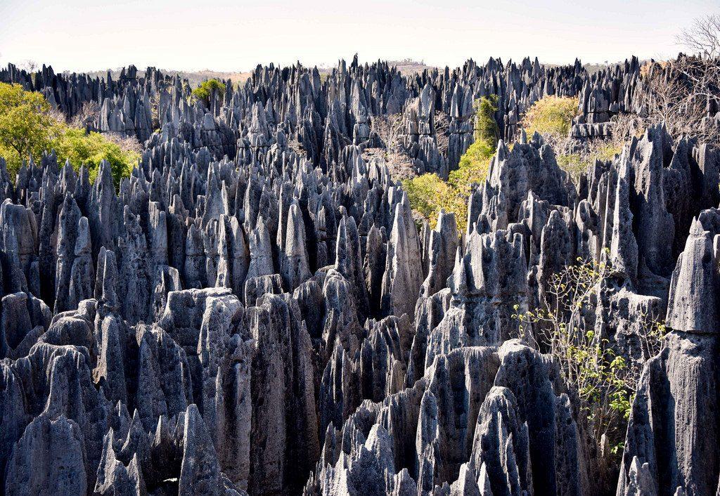 Sudul Madagascarului si Tsingy (15 zile/14 nopti)