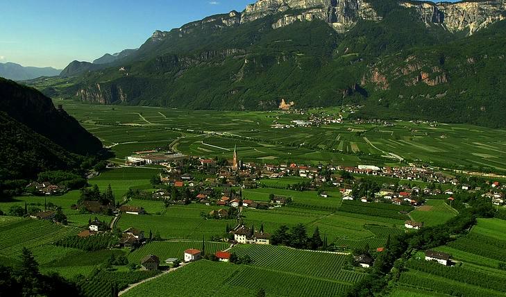 Descoperiti vinul spumant din munti & Pivnitele Trento DOC