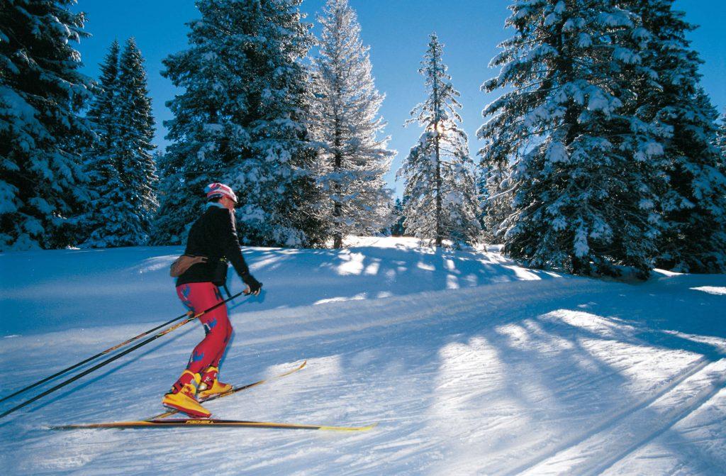 Vacanta copiilor la schi in Italia