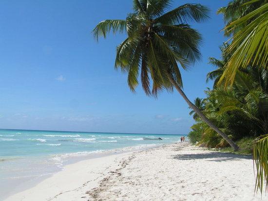 Republica Dominicana la tarife imbatabile!