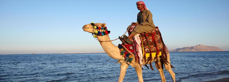 Egipt | Sharm El Sheikh -Four Seasons Sharm El Sheikh