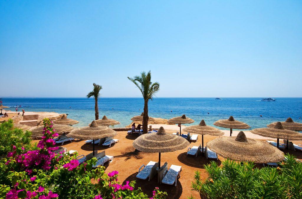 Egipt - Hurghada & Sharm el Sheikh!