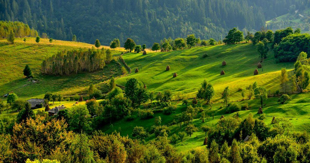 Vacante in Romania